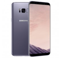 Samsung Galaxy S8 in Grau